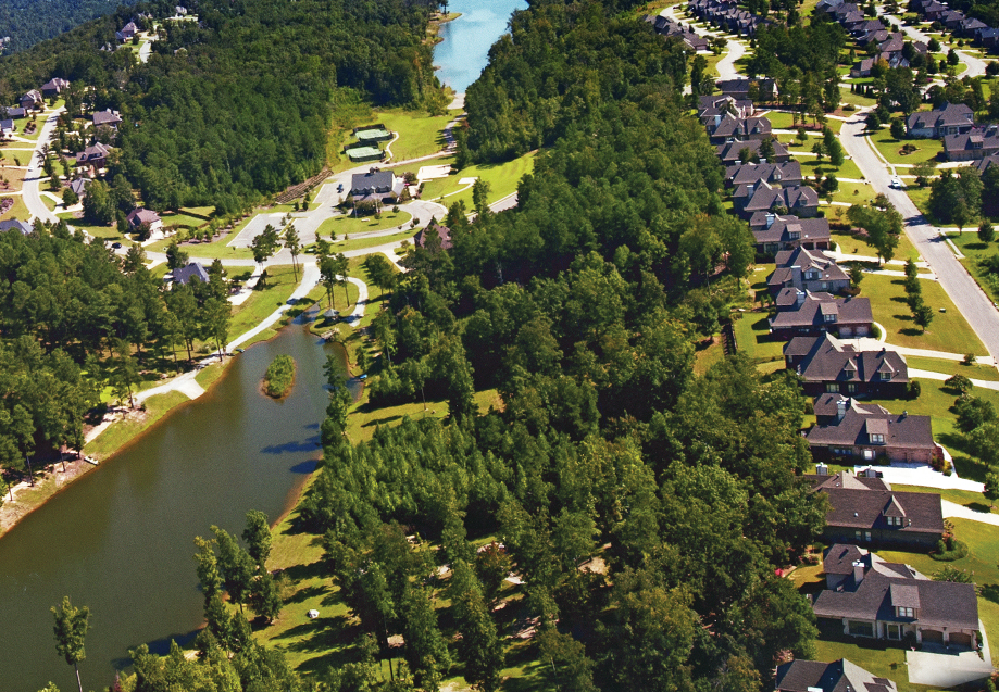 Aerial View of Carrington Lake Community